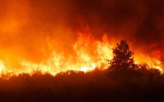 Multiple Wildfires Have Devastating Effects in California