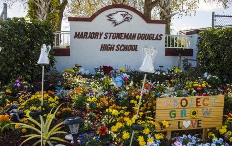 Memorial garden for those killed in the shooting at Marjory Stoneman Douglas Highschool