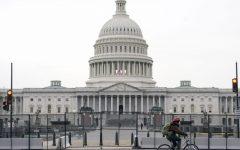 Capitol Panic