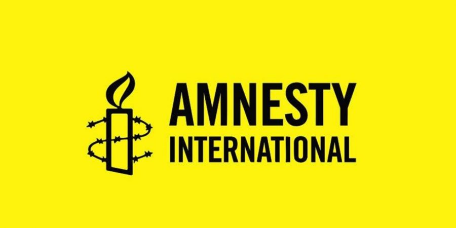 Amnesty International and Navalny